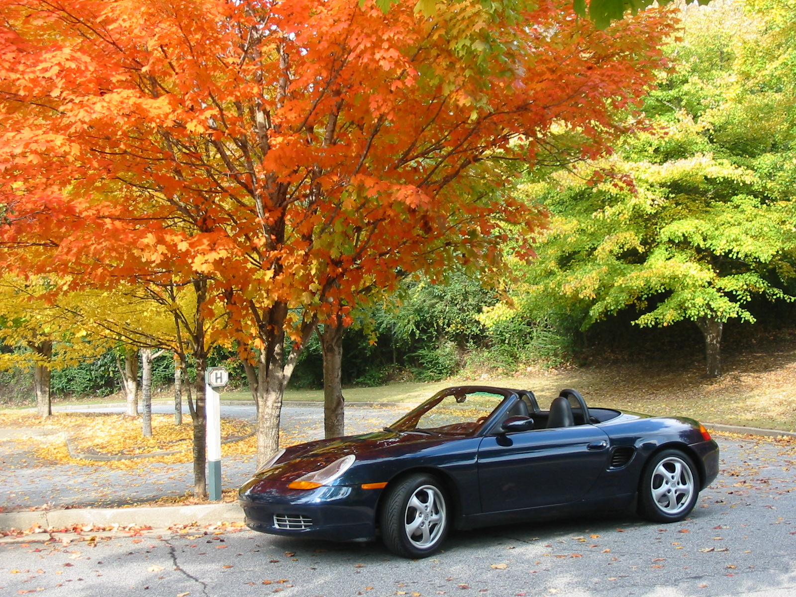 Boxster 11-05 011